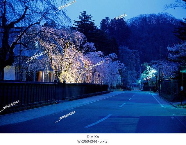 Dawn at Kakunodate, Semboku, Akita, Japan