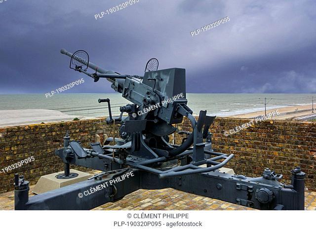 Flak 28 / Bofors 40 mm gun, anti-aircraft auto-cannon at Raversyde Atlantikwall / Atlantic Wall open-air museum at Raversijde, West Flanders, Belgium