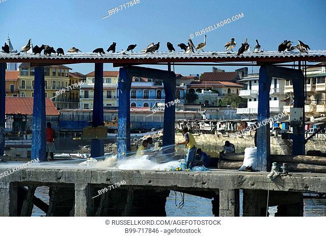 Fish Market Quay Casco Viejo Santa Ana Panama City Republic Of Panama