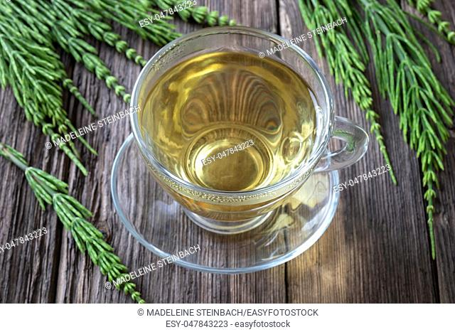 Horsetail tea with fresh plant on a table