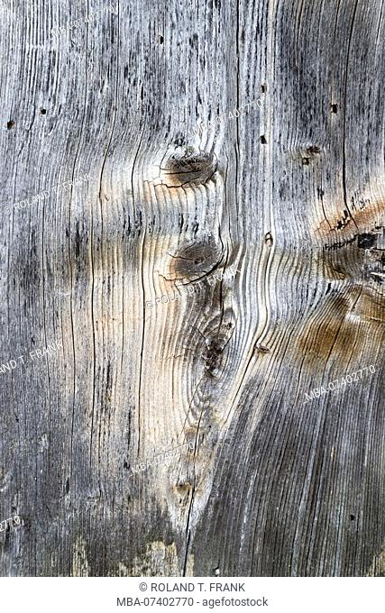 Knotholes in an old grayed board