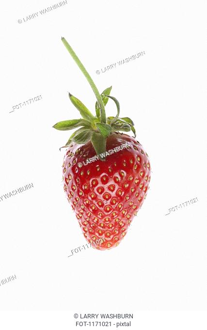 A single strawberry on a white background