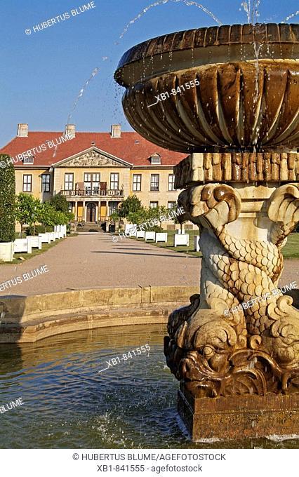 Orananienbaum palace, Oranienbaum, district Wittenberg, Saxony-Anhalt, Germany, Europe