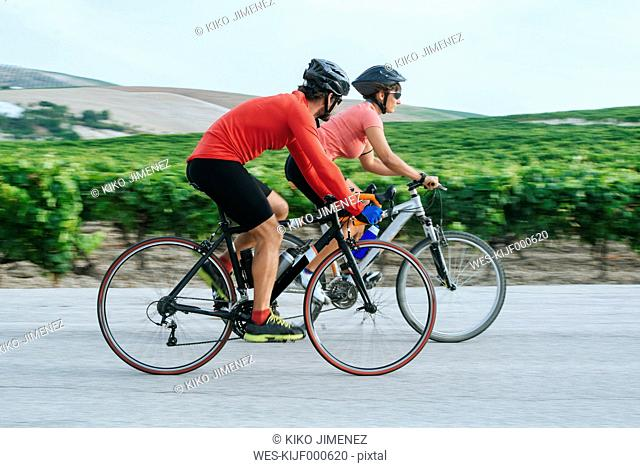 Spain, Andalusia, Jerez de la Frontera, Couple on bicycles on a road between vineyards