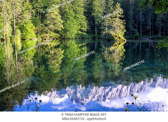 Germany, Bavaria, Bavarian alps, Grainau, mirroring of the Waxensteine in the crystal-clear Badersee