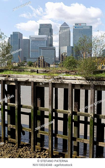 Skyscrapers at Canary Wharf, Isle of Dogs, Tower Hamlets, Docklands, London, United Kingdom