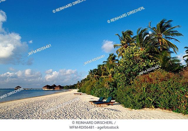 Maledivian Beach, Indian Ocean, Medhufushi, Meemu Atoll, Maldives