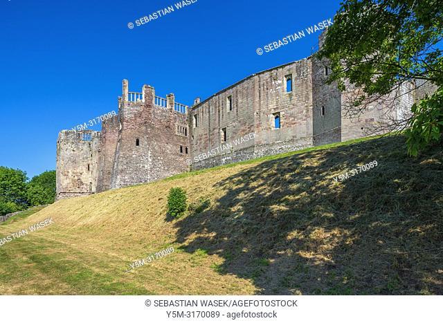 Raglan Castle, Monmouthshire, Wales, United Kingdom, Europe