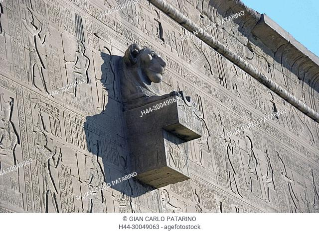 Dendera Egypt, ptolemaic temple dedicated to the goddess Hathor. A gargoyle in form of a lion head