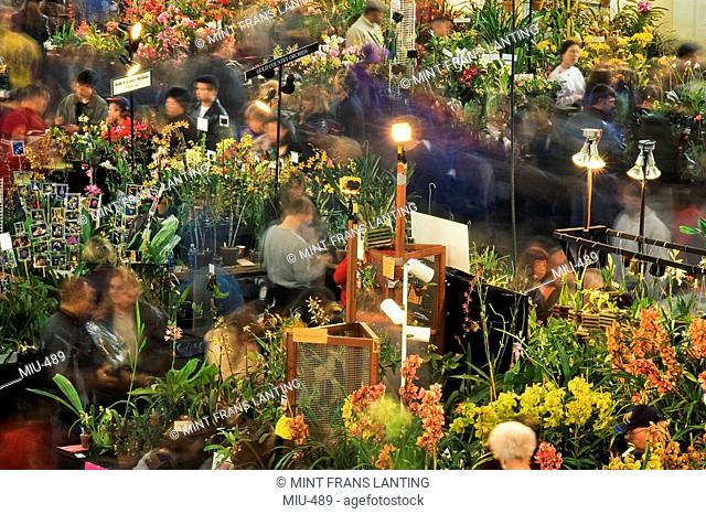 Visitors at San Francisco Orchid Show, California