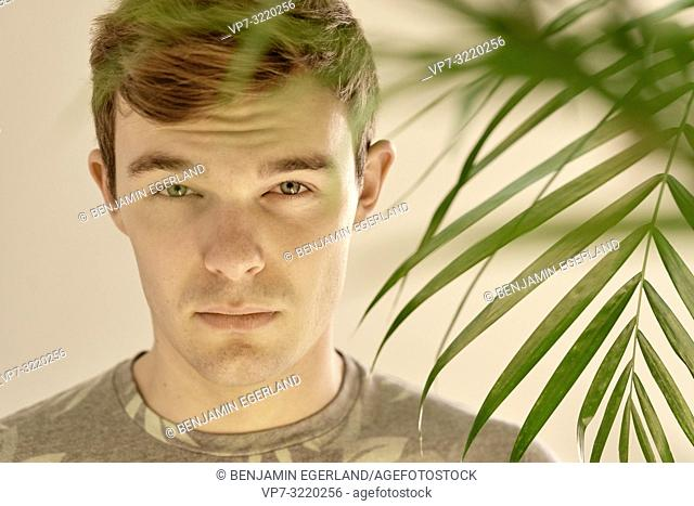 Young man behind leaves of plant at home, portrait