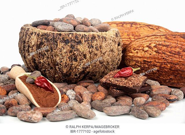Cocoa pod and cocoa powder, chocolate, chillis and cocoa pods