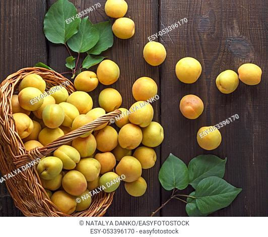 ripe yellow apricots scattered from a wicker basket on a brown wooden background, top view