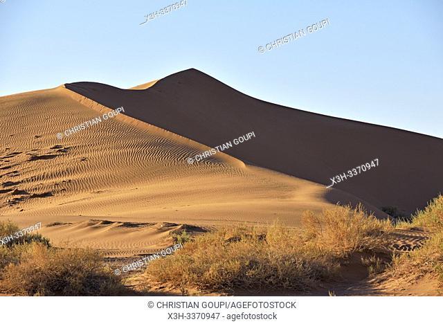 dunes at Nesrat, village of Sahara desert, Draa River valley, Province of Zagora, Region Draa-Tafilalet, Morocco, North West Africa