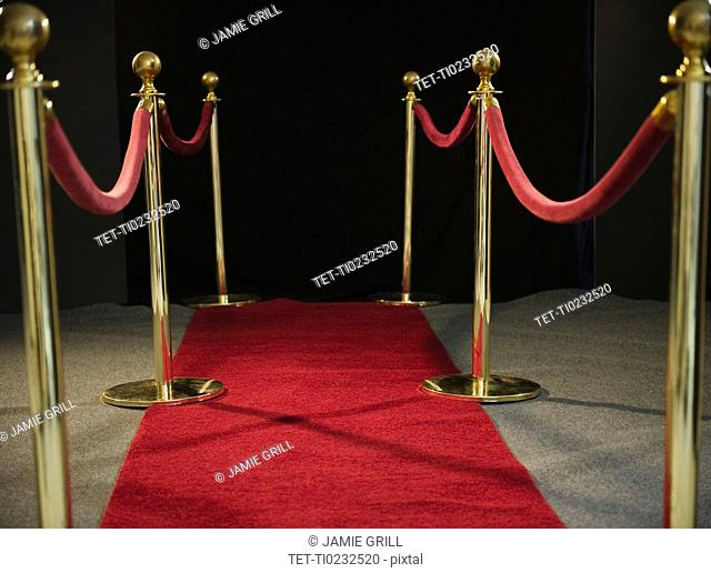 Rope barriers at red carpet event