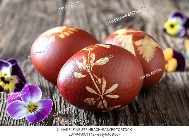 Easter eggs dyed with onion peels with a pattern of fresh herbs and flowers