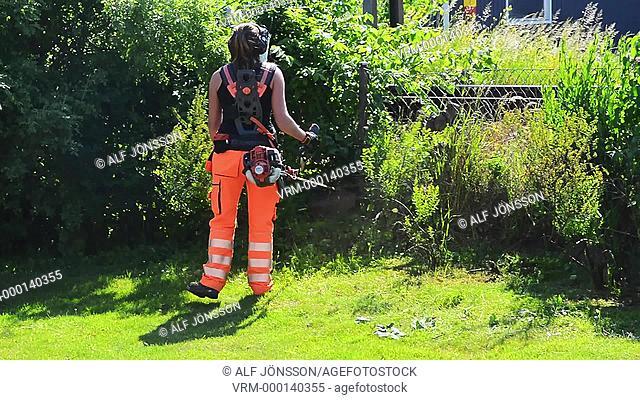 Garden worker removing weed