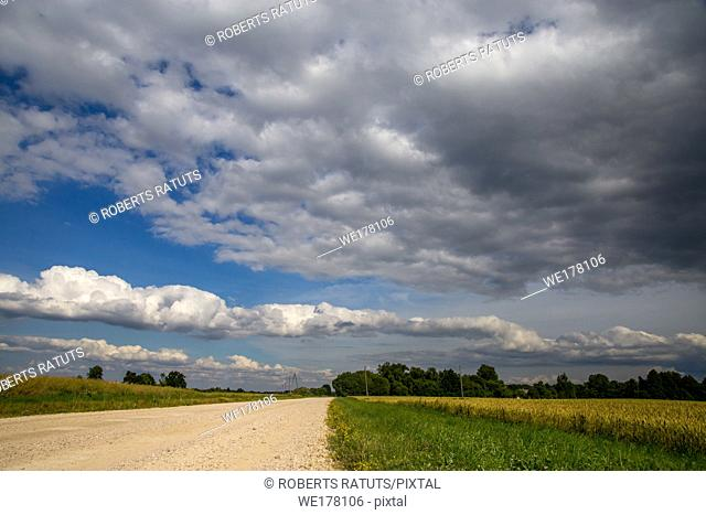 Summer landscape with empty road, trees and blue sky. . Rural road, cornfield, wood and cloudy blue sky. Classic rural landscape in Latvia