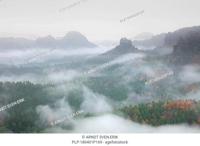 View from Mount Gleitmannshorn over the Kleiner Zschand to Mount Winterstein, Elbe Sandstone Mountains, Saxonian Switzerland NP, Saxony, Germany