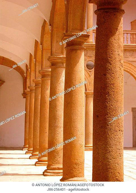 Columns at the courtyard, Hospital Tavera (built 16th century). Toledo. Spain