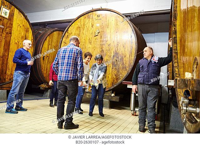 Sidreria Barkaiztegi, Cider house, Martutene, Donostia or San Sebastian, Gipuzkoa province, Basque Country, Spain