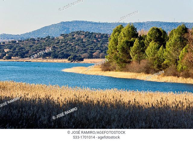 Bolarque reservoir  Guadalajara  Castilla la Mancha  Spain
