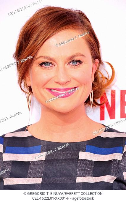 Amy Poehler at arrivals for Netflix's WET HOT AMERICAN SUMMER: FIRST DAY OF CAMP Premiere, The School of Visual Arts (SVA) Theatre, New York, NY July 22, 2015