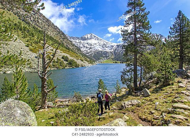Parc Nacional d'Aigüestortes. Vall de Boí. Lleida. Spain