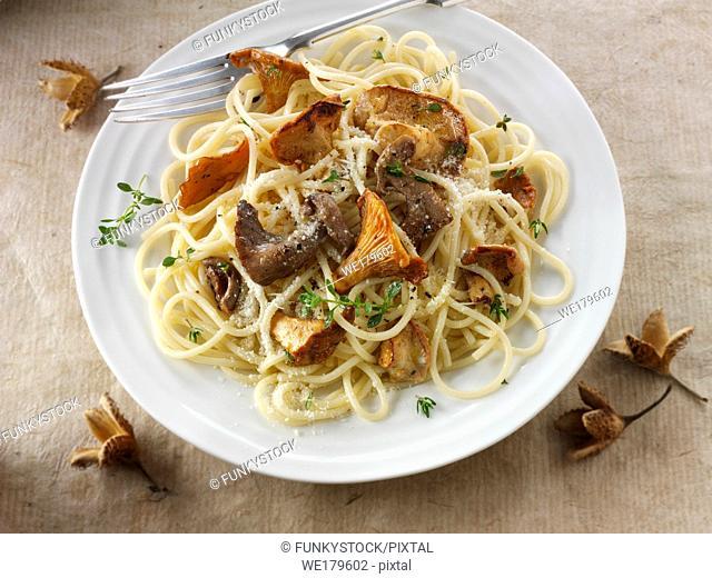 Wiild chanterelle or girolle (Cantharellus cibarius), Pied de Mouton Mushrooms (hydnum repandum) or hedgehog mushrooms, Pied Bleu of blue foot mushrooms...
