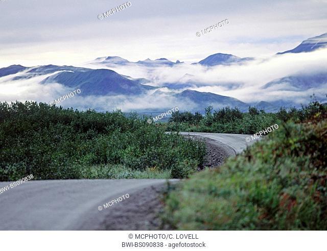 Mist rises above the Alaska Range in Denali Park Road, USA, Alaska, Denali Nationalpark