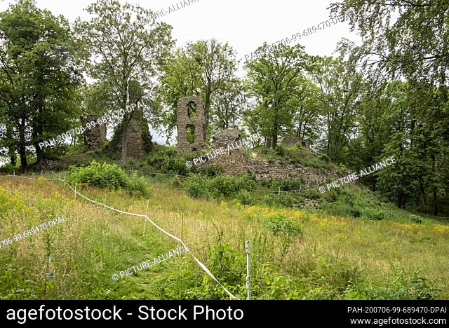 05 July 2020, Saxony-Anhalt, Thale: The ruins of Stecklenburg Castle stand in the middle of the forest. The castle itself was built in the Middle Ages
