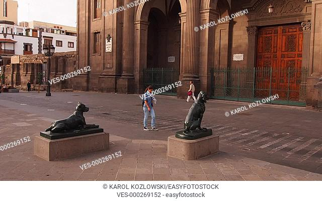 Dogs in front of the Cathedral on Santa Ana Square in Las Palmas de Gran Canaria, Canary Islands, Spain