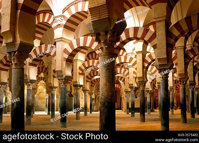 The Abderramán Hall. . The Mosque. . Cordoba. Spain
