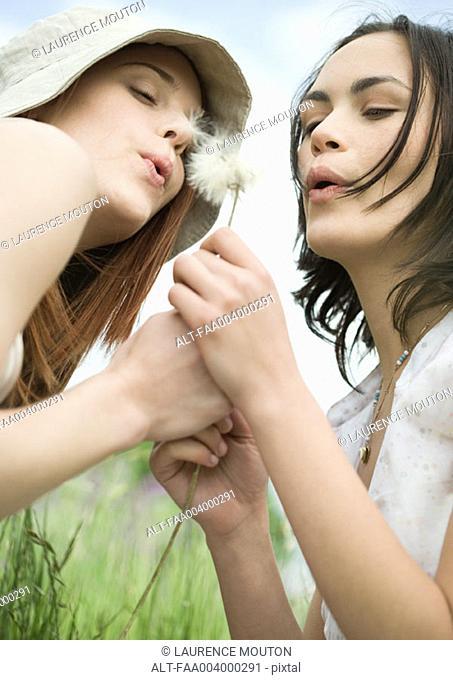 Two young women blowing dandelion