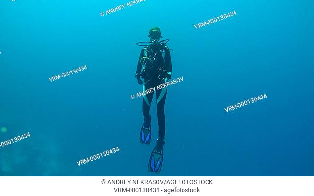 Woman diver hangs in the water and looking up, Indian Ocean, Maldives