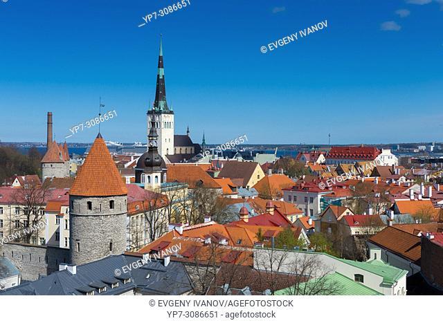 Tallinn old town skyline from the top