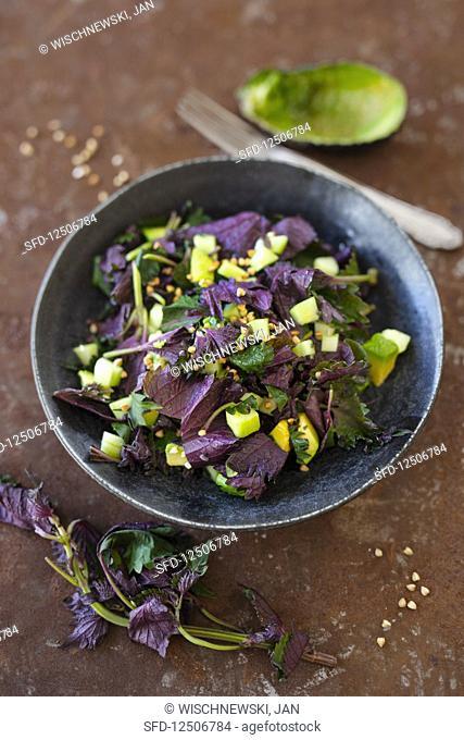 Salad with shiso, avocado, cucumber and buckwheat (vegan, low carb)