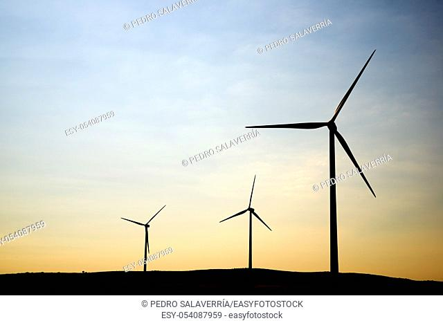 Windmills for electric production in Zaragoza Province, Aragon, Spain