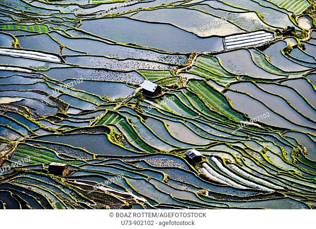 Dramatic landscape in YuanYang