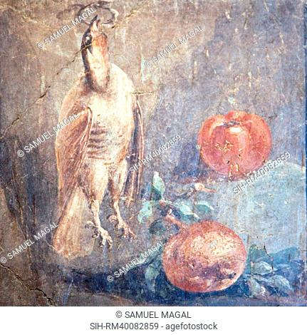 Italy, Naples, Naples National Archeological Museum, Still life with Bird and Pomegranates