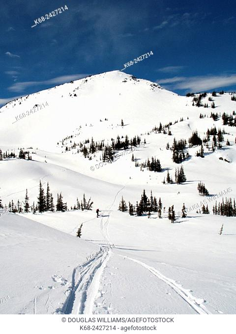 skiing in the mountains of Wells Gray Provincial Park in British Columbia, Canada
