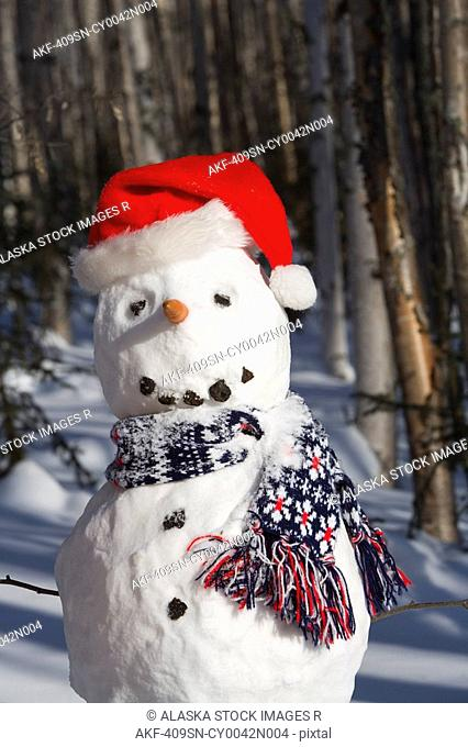 Snowman in santa hat & scarf deep in birch forest interior Alaska Winter