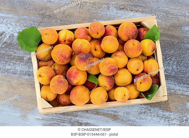 Top view wood box with apricots on a old wooden background
