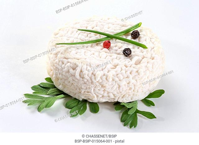 French farm goat cheese on white background