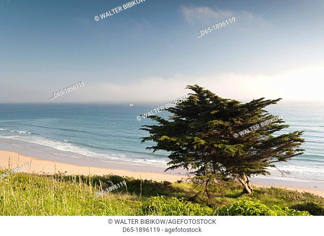 France, Normandy Region, Manche Department, Barneville-Carteret, elevated view of the Cap de Carteret cape beach
