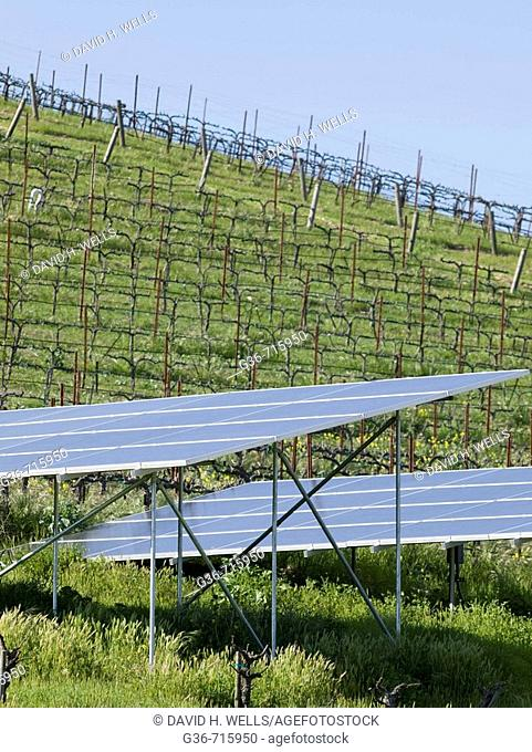 Soloar power panels at a winery near Paso Robles, California, USA