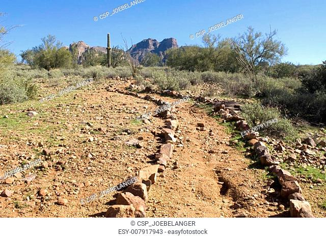 Remote desert trail