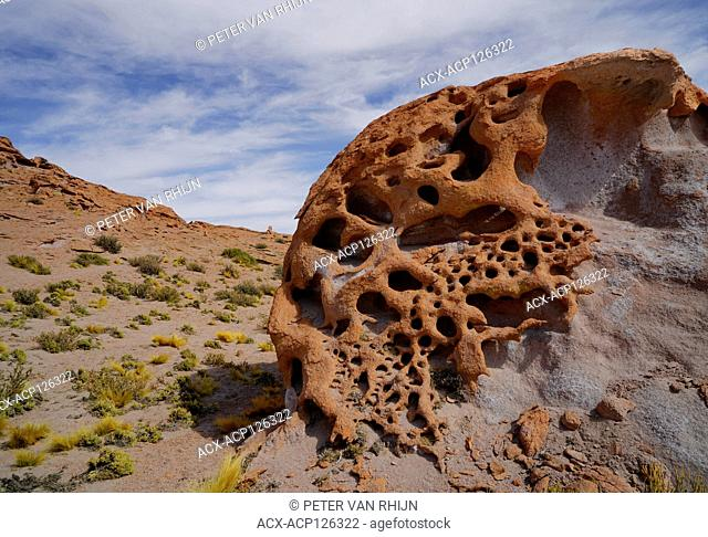Erosion has removed a soft rock layer below the surface layer, creating very unusual rock formations on the Altiplano in the Atacama Desert in Chile