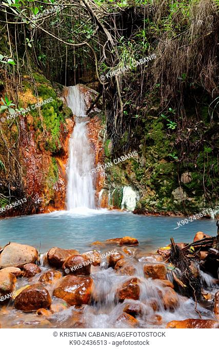 Smalll waterfall with pond in thick forest in the Valley of Desolation near the Boiling Lake, Morne Trois Piton National Park, Dominica, Windward Islands