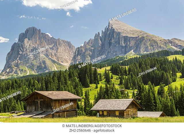 Two barns with two high mountains in background and trees and forest, Selva, val Gardena, Dolomites, Italy